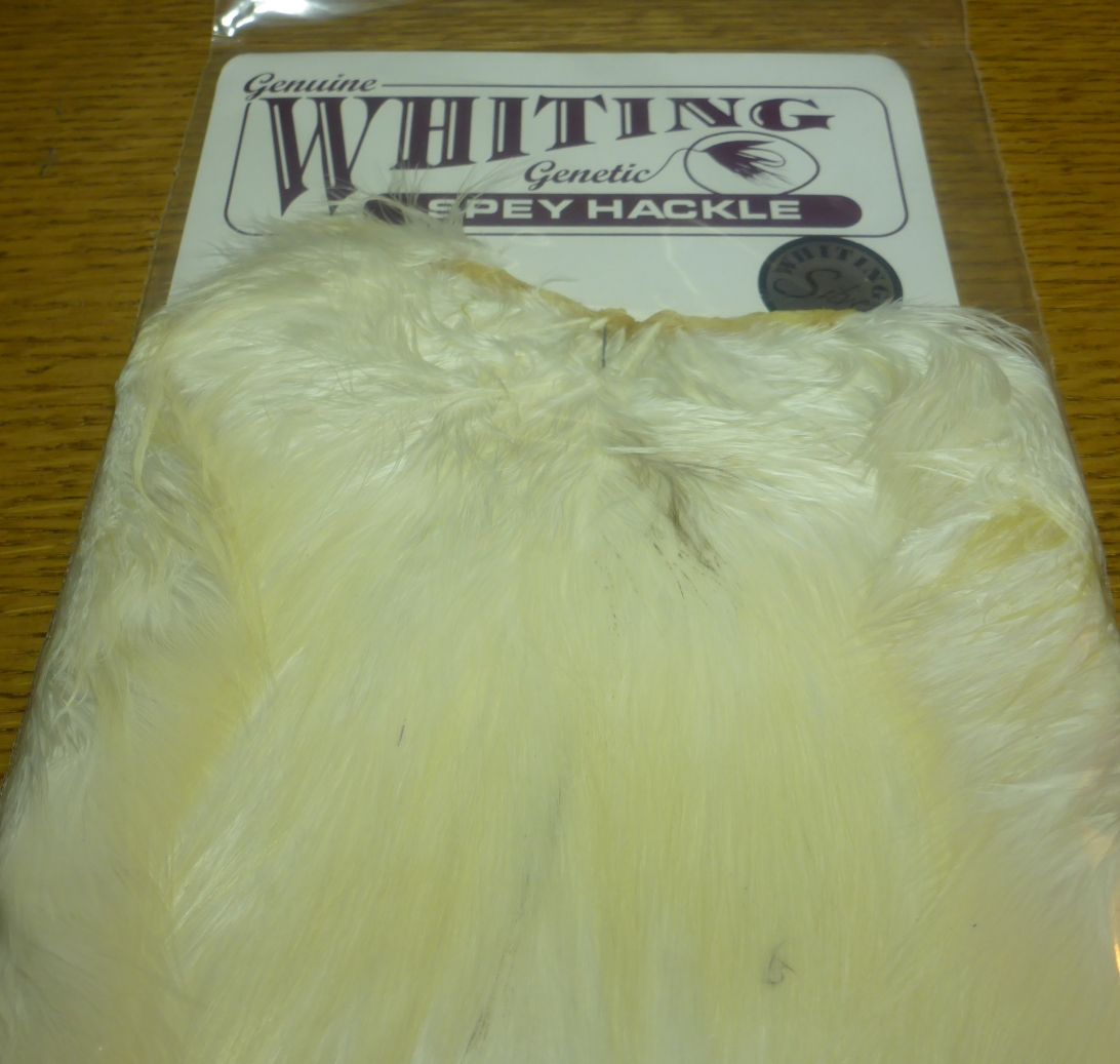 WHITING FARMS WHITING SPEY SADDLE ROOSTER FEATHERS AUSTRALIA FLY TYING FEATHERS TROUTLORE