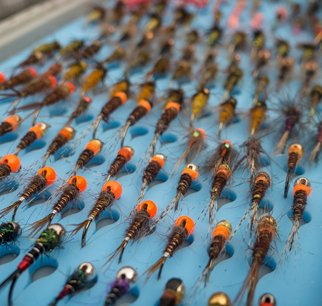 Tacky day pack fly box troutlore for The fishing fly box